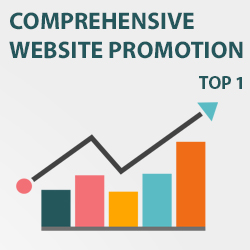 Comprehensive website promotion